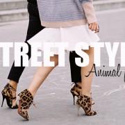 Dica fashion: Aposte no animal print
